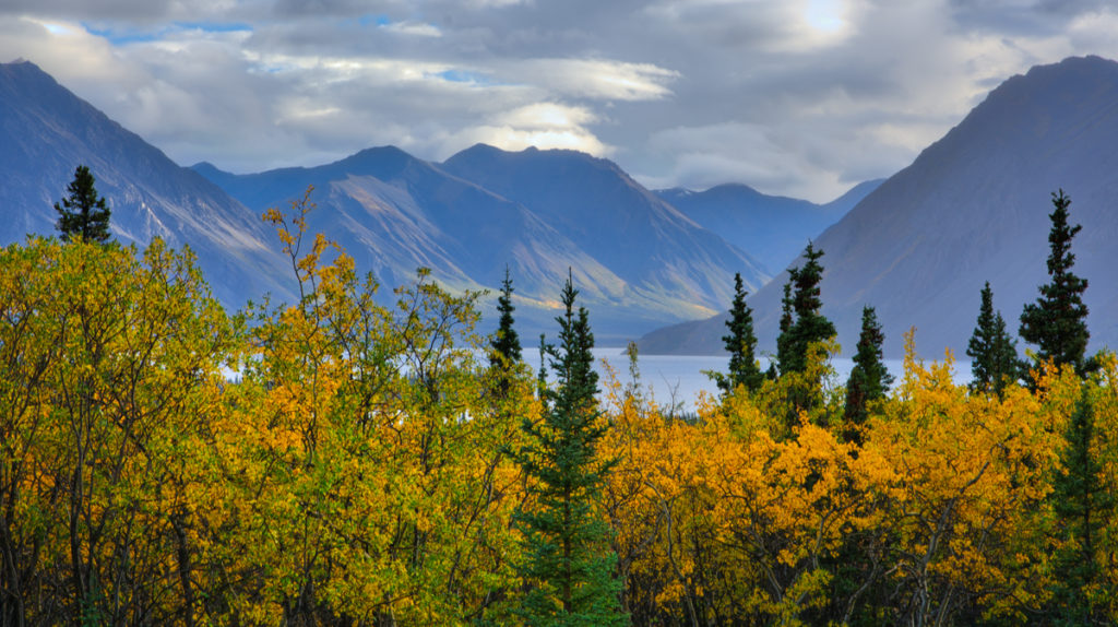 fall-rains-along-the-haines-highway