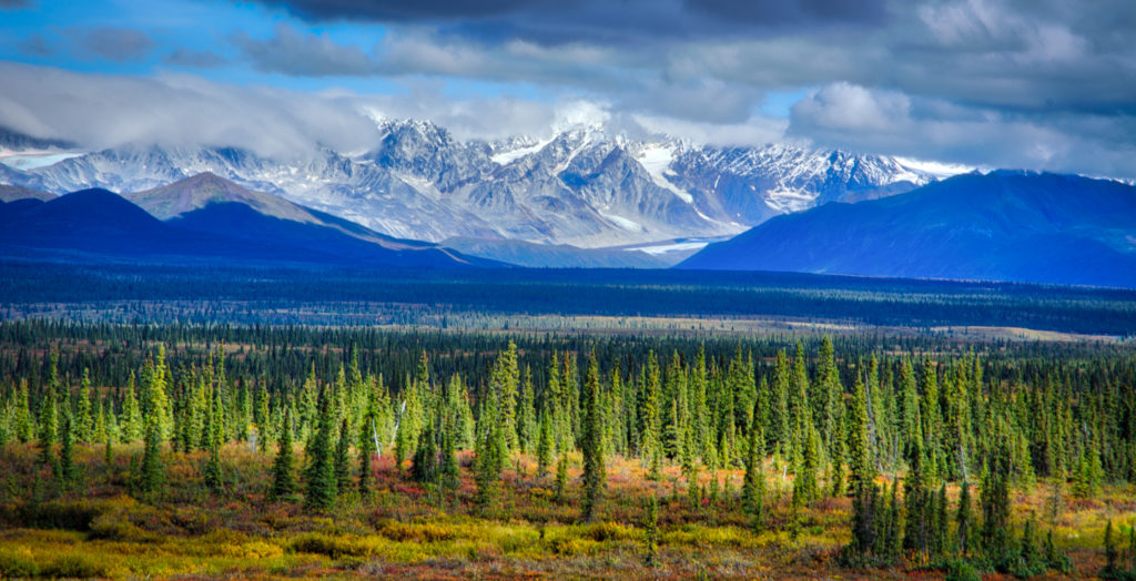 light-on-the-alaska-range